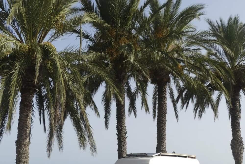 Wohnmobil mieten in Barcelona von privat   Mercedes Carlos