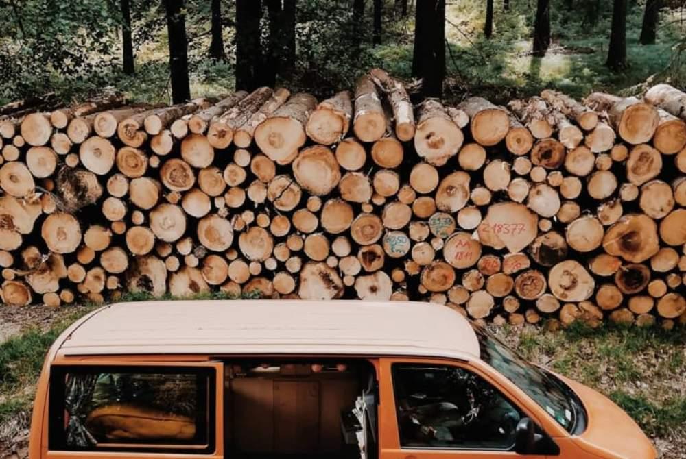 Wohnmobil mieten in Halle (Saale) von privat | VW Pumpkin the Van