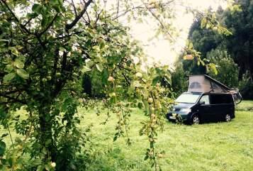 Wohnmobil mieten in Konstanz von privat | Volkswagen  VW California