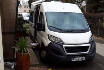 Wohnmobil mieten in Wesseling von privat | Peugeot   Emma
