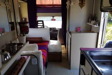 Wohnmobil mieten in Amsterdam von privat | Fiat ducato La  belle vie