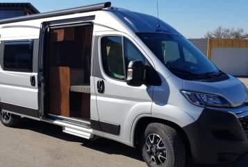 Wohnmobil mieten in Sulzberg von privat | Pössl  Alpenflitzer