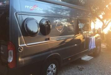 Wohnmobil mieten in Oldenburg von privat | Cathargo SCOTTY m. Solar