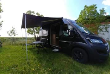 Wohnmobil mieten in Reinstorf von privat | Peugeot Momo