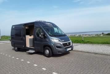 Wohnmobil mieten in Jever von privat | Pössl Roadcar Automatik Black Sauser