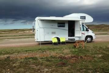 Wohnmobil mieten in Verbandsgemeinde Montabaur von privat | Dethleffs  Dogs Holiday