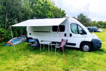 Wohnmobil mieten in Hamburg von privat | Fiat  Homie