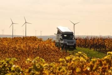 Wohnmobil mieten in Mainz von privat | Ford Odgar