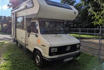 Wohnmobil mieten in Hamburg von privat | Fiat Charlie