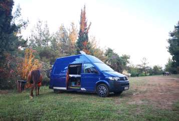Wohnmobil mieten in Köln von privat | VW Bruno