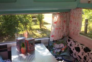 Wohnmobil mieten in Den Haag von privat | Kip  The pin-up Kip