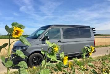 Wohnmobil mieten in Köln von privat | VW Ferdi II