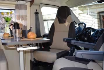 Wohnmobil mieten in Essen von privat | XGO  Ameise