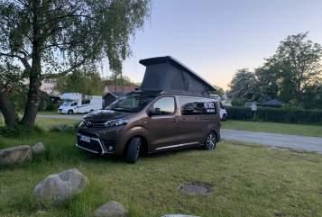Wohnmobil mieten in Hamburg von privat   Toyota Proace Moin Piet