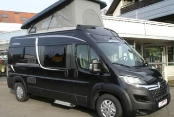 Wohnmobil mieten in Bötersen von privat | Pössl Pössl 2Win 4