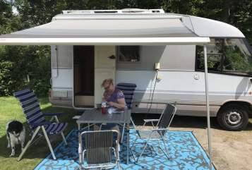 Wohnmobil mieten in Hoogvliet von privat | Dethleffs  Gobbel