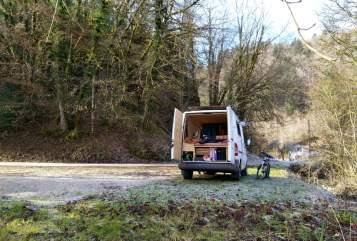 Wohnmobil mieten in Rum von privat | Mercedes Benz Sprinter Chirimoya