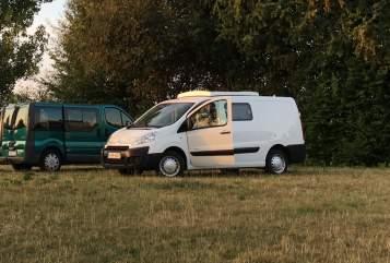 Wohnmobil mieten in Köln von privat | Citroën Mohn-Mobil