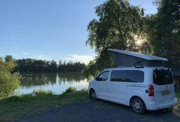Wohnmobil mieten in Radeberg von privat   Pössl Dumbo
