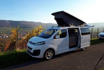 Wohnmobil mieten in Weinstadt von privat | Pössl Bester Camper