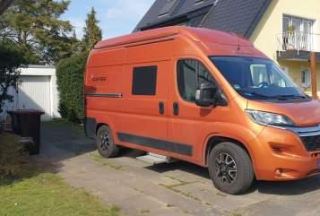 Wohnmobil mieten in Köln von privat | Citroen Jumper Orangina