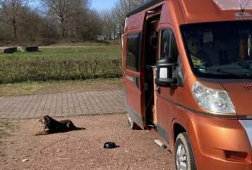 Wohnmobil mieten in Wörth am Rhein von privat   Adria Adria Twin SP