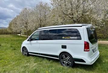 Wohnmobil mieten in Nördlingen von privat | Mercedes-Benz  VanKult 75