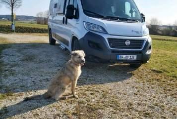 Wohnmobil mieten in Rodder von privat | PÖSSL  Speedy