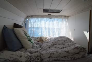 Wohnmobil mieten in Winsen von privat | IVECO Sleepy