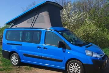Wohnmobil mieten in Dresden von privat | Westfalia Campino