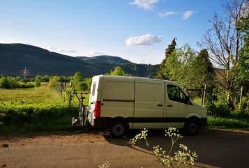 Wohnmobil mieten in Bad Teinach-Zavelstein von privat | VW Frieda