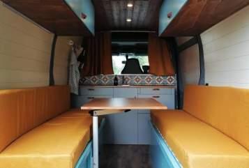 Wohnmobil mieten in Braunschweig von privat | Renault Reisegold