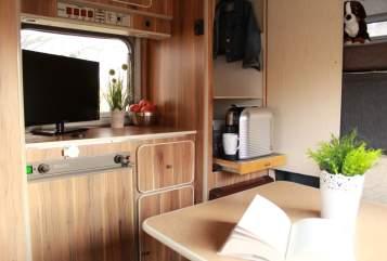 Wohnmobil mieten in Neuburg an der Donau von privat | Ford  Lilly