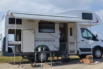 Wohnmobil mieten in Nagold von privat | Roller Team Dog's Mobile 275