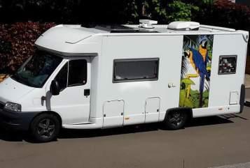 Wohnmobil mieten in Kirchheimbolanden von privat | Fiat Ducato Globetrotter