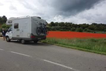 Wohnmobil mieten in Lübeck von privat | Fiat  ChrisMO
