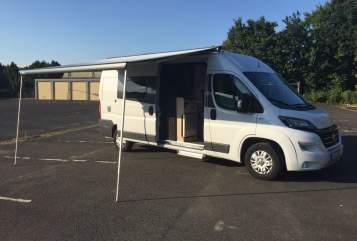 Wohnmobil mieten in Köln von privat | Fiat   Zugperle