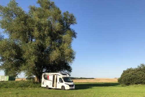 Wohnmobil mieten in St. Wendel von privat | Bürstner DogHoliday Cara