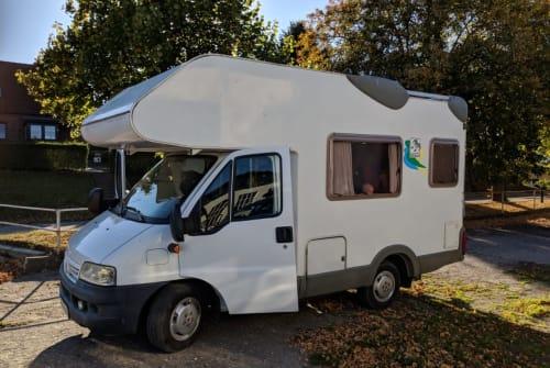 Wohnmobil mieten in Hamburg von privat | Knaus Bruno