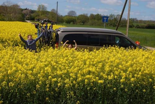 Wohnmobil mieten in Brodersdorf von privat | Mercedes Benz Viano Stellies