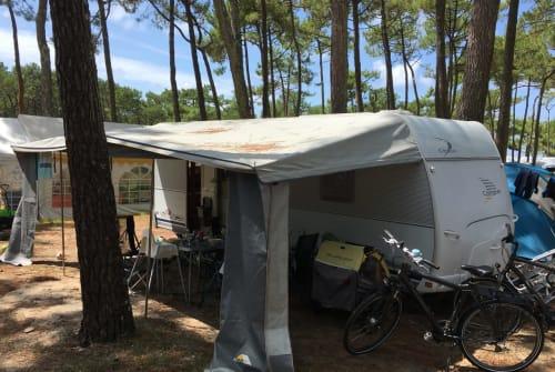 Wohnmobil mieten in Offenburg von privat | Dethleffs FamilyWowa
