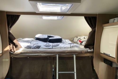 Wohnmobil mieten in Egelsbach von privat | Sun Living Lemmy