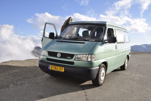 Wohnmobil mieten in Amsterdam von privat   Volkswagen CaliforniaCoach