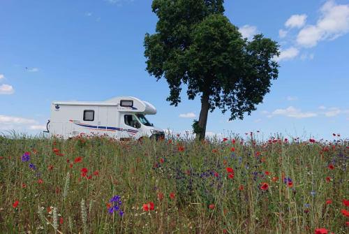 Wohnmobil mieten in Landau in der Pfalz von privat | Ahorn Der Landauer