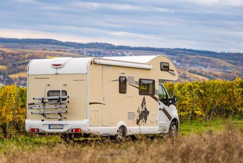 Wohnmobil mieten in Frankenthal von privat | Renault Ahorn FirstOne