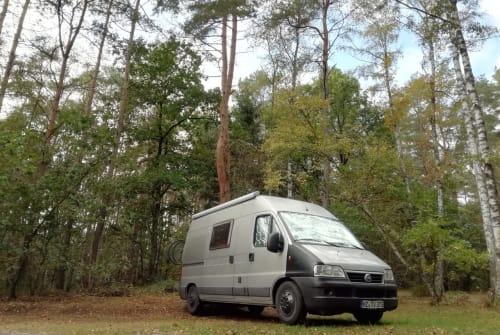 Wohnmobil mieten in Mainz von privat | Fiat Thorvan