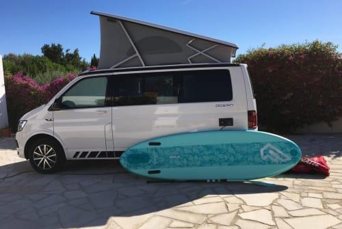Wohnmobil mieten in Lilienthal von privat | VW California Sternschnuppi