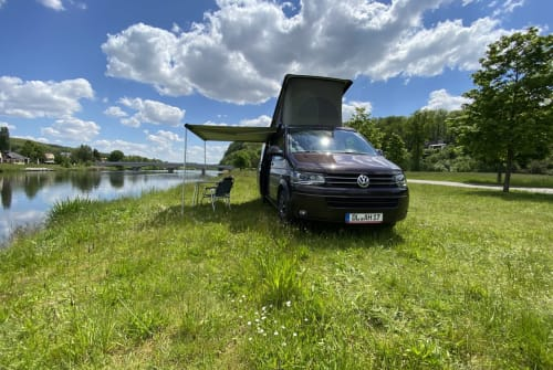 Wohnmobil mieten in Döbeln von privat | VW T5 Cali 4motion