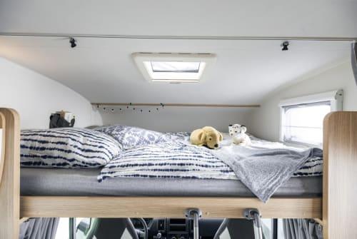 Wohnmobil mieten in Berlin von privat | Sunlight Feldhase AUTARK