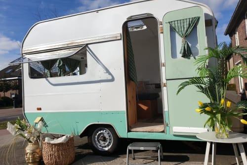 Wohnmobil mieten in Deurne von privat | Kip gepimpte beauty
